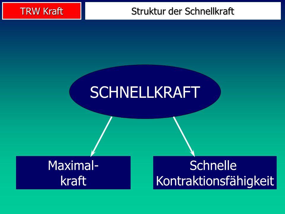 TRW Kraft SCHNELLKRAFT Maximal- kraft Schnelle Kontraktionsfähigkeit Struktur der Schnellkraft