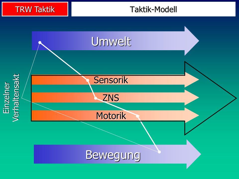 TRW Taktik Von der Forschungsfront 2 Taktische Entscheidungsprozesse (Raab 2002): Top-down-Prozesse Kognitionsgesteuerte, verbalisierbare Erwartungs- und Zielbildungsprozesse Regeln: Wenn Situation A, dann Reaktion X Bottom-up-Prozesse Wahrnehmungsgesteuerte, nicht verbalisierbare Wahrnehmungs-Handlungsprozesse Abwehrverhalten im 1:1, Reaktion auf Torwart