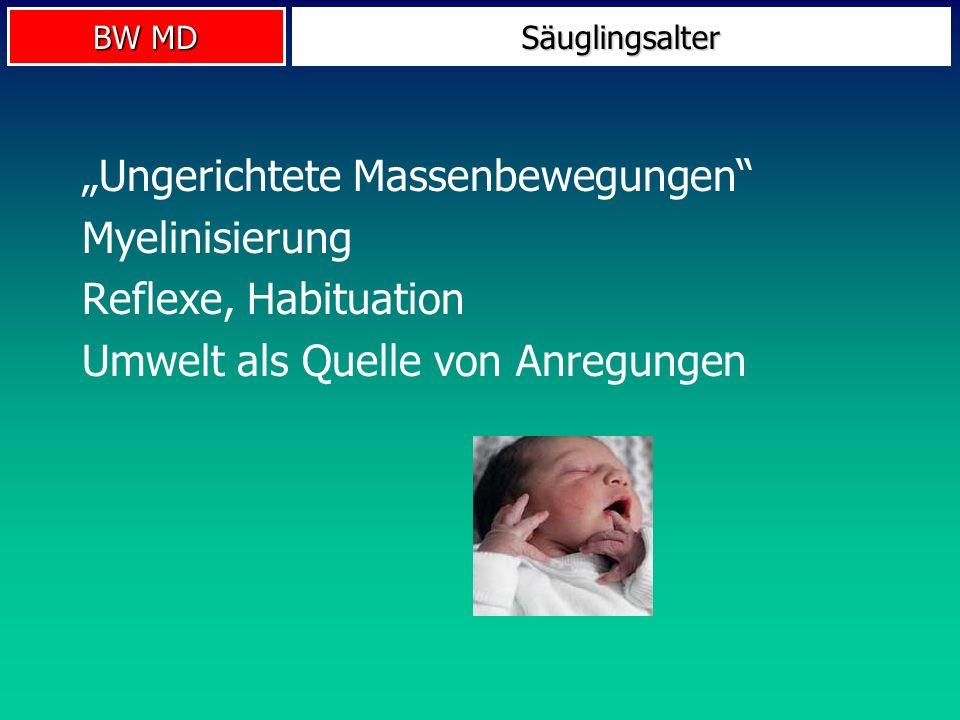 BW MD Säuglingsalter Ungerichtete Massenbewegungen Myelinisierung Reflexe, Habituation Umwelt als Quelle von Anregungen