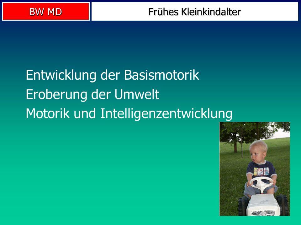 BW MD Frühes Kleinkindalter Entwicklung der Basismotorik Eroberung der Umwelt Motorik und Intelligenzentwicklung