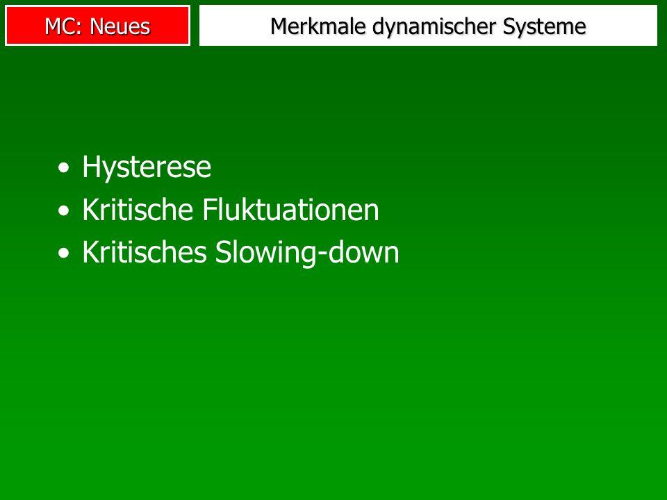 MC: Neues Merkmale dynamischer Systeme Hysterese Kritische Fluktuationen Kritisches Slowing-down