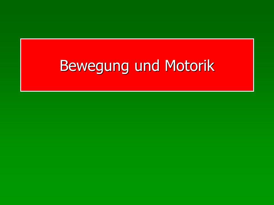 Begriffe Historische Auffassungen: Motorik oder Bewegung Motorik Bewegung Bewegung Heute: + Motorik (Innenaspekt) Bewegung (Außenaspekt)