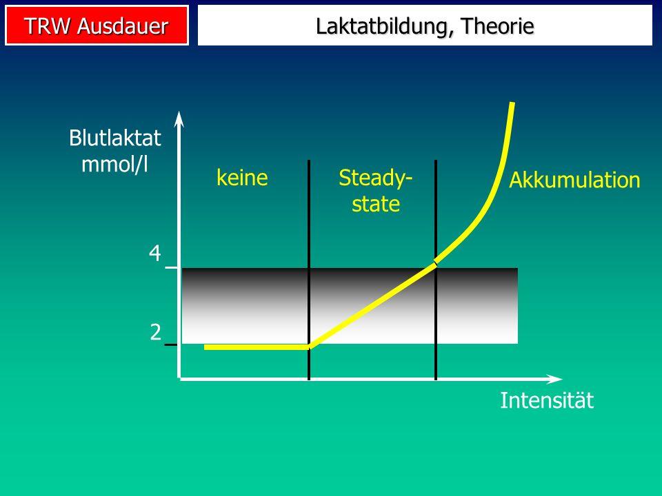 TRW Ausdauer 4 2 Laktatbildung, Theorie Blutlaktat mmol/l Intensität keineSteady- state Akkumulation