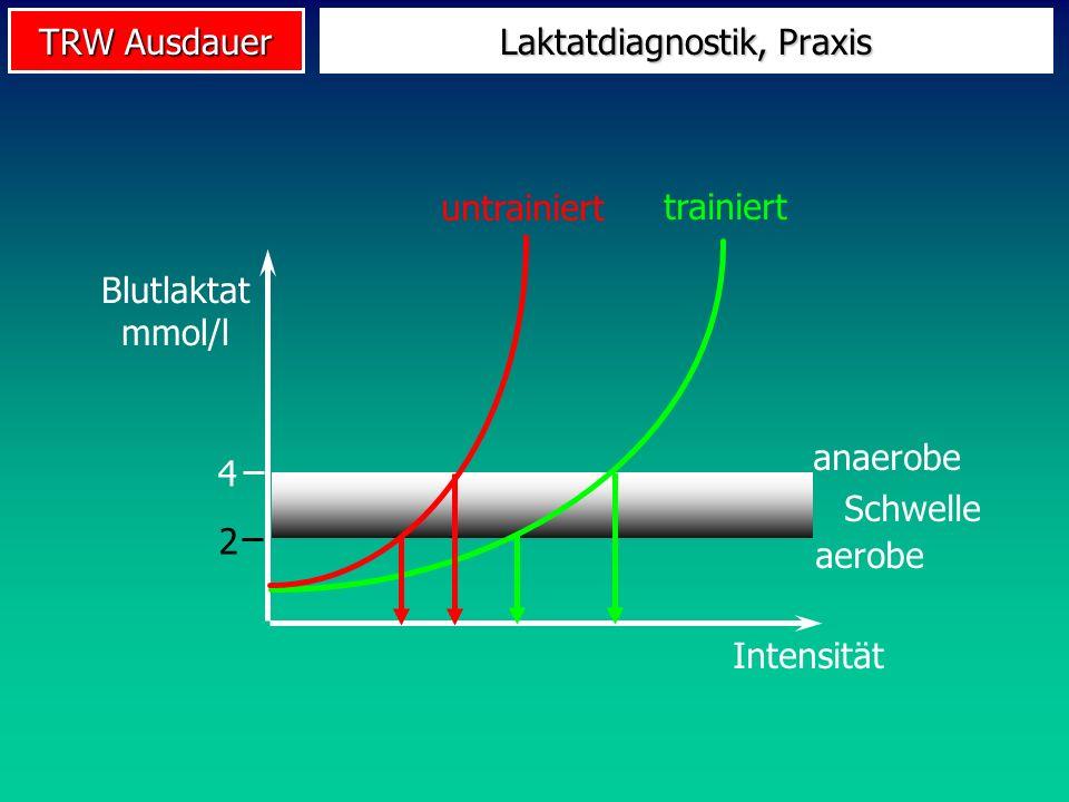 TRW Ausdauer Schwelle anaerobe aerobe 4 2 Laktatdiagnostik, Praxis Blutlaktat mmol/l Intensität untrainiert trainiert