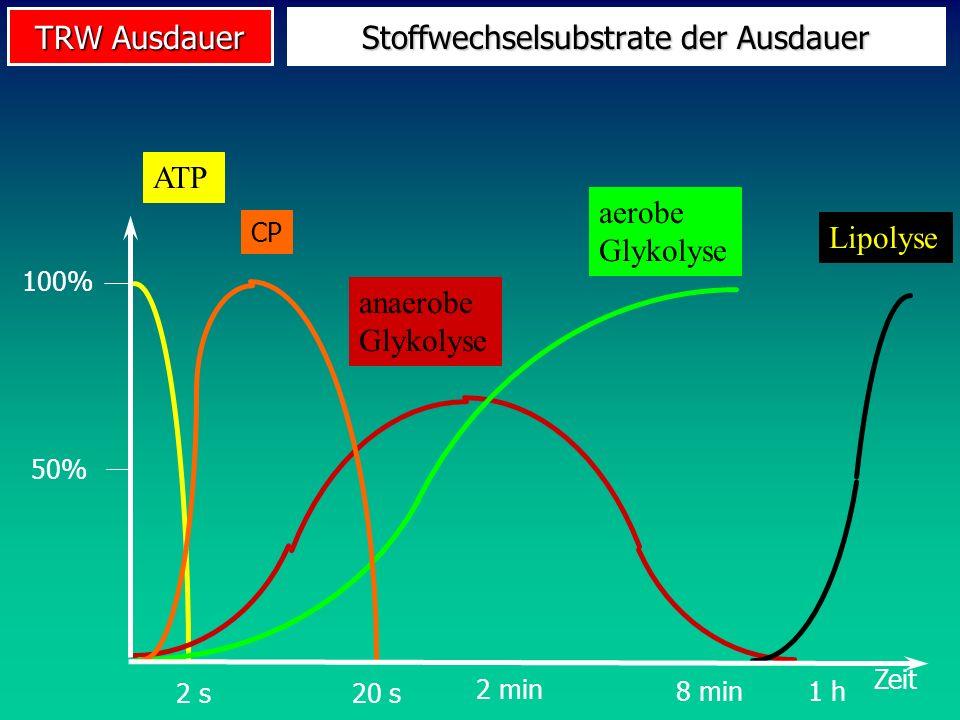 TRW Ausdauer Stoffwechselsubstrate der Ausdauer ATPanaerobe Glykolyse aerobe Glykolyse Lipolyse CP 100% Zeit 50% 2 s20 s 1 h8 min 2 min