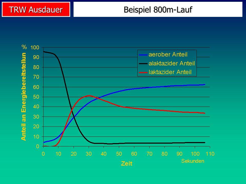 TRW Ausdauer Beispiel 800m-Lauf