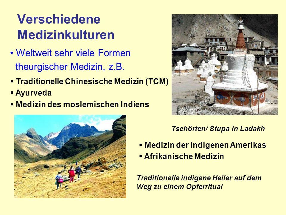 Verschiedene Medizinkulturen Weltweit sehr viele Formen theurgischer Medizin, z.B.
