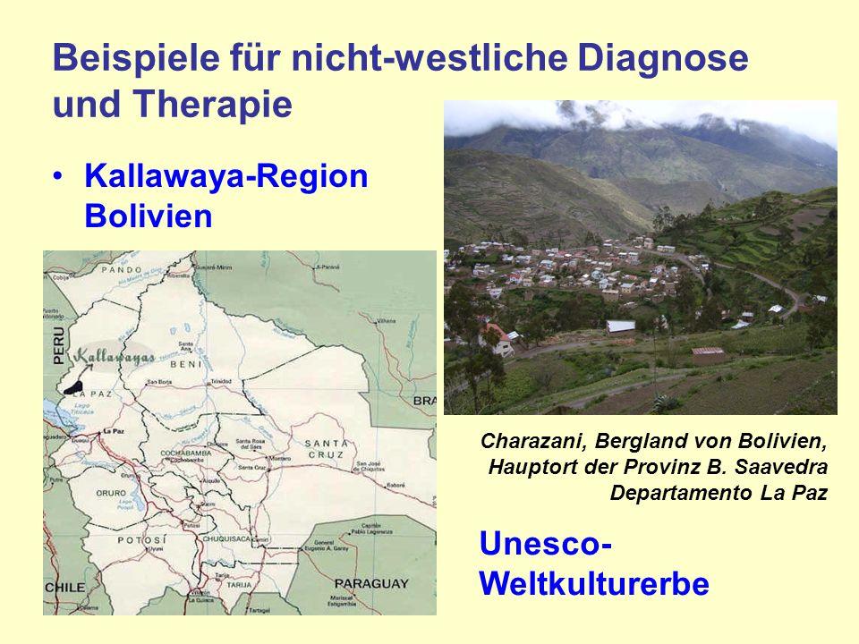 Beispiele für nicht-westliche Diagnose und Therapie Kallawaya-Region Bolivien Charazani, Bergland von Bolivien, Hauptort der Provinz B.
