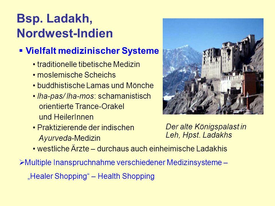 Bsp. Ladakh, Nordwest-Indien Vielfalt medizinischer Systeme traditionelle tibetische Medizin moslemische Scheichs buddhistische Lamas und Mönche lha-p