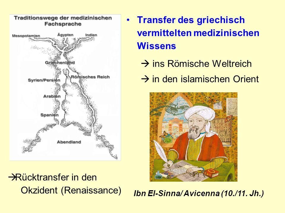 Transfer des griechisch vermittelten medizinischen Wissens ins Römische Weltreich in den islamischen Orient Rücktransfer in den Okzident (Renaissance) Ibn El-Sinna/ Avicenna (10./11.