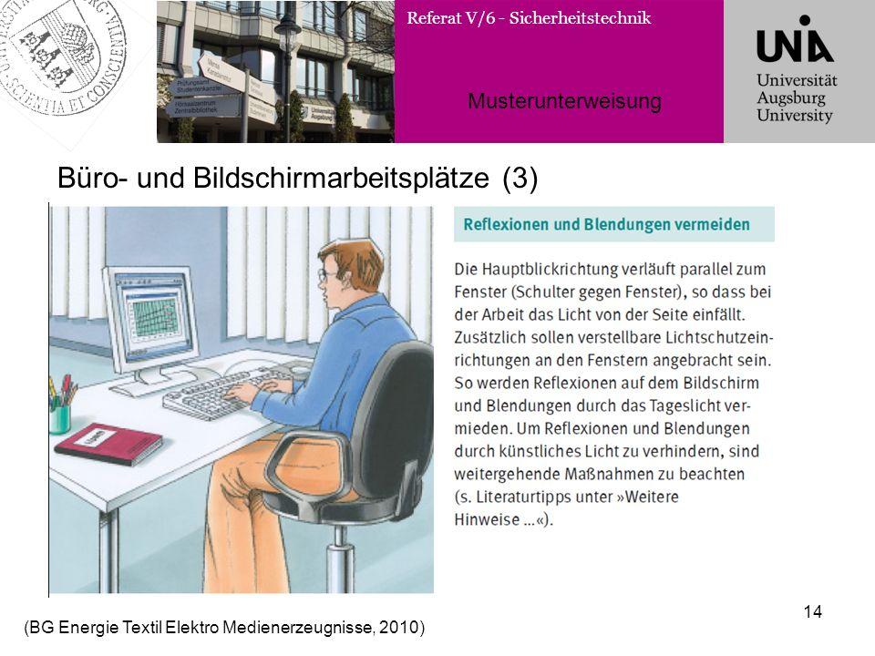 Referat V/6 - Sicherheitstechnik Musterunterweisung 14 Büro- und Bildschirmarbeitsplätze (3) (BG Energie Textil Elektro Medienerzeugnisse, 2010)