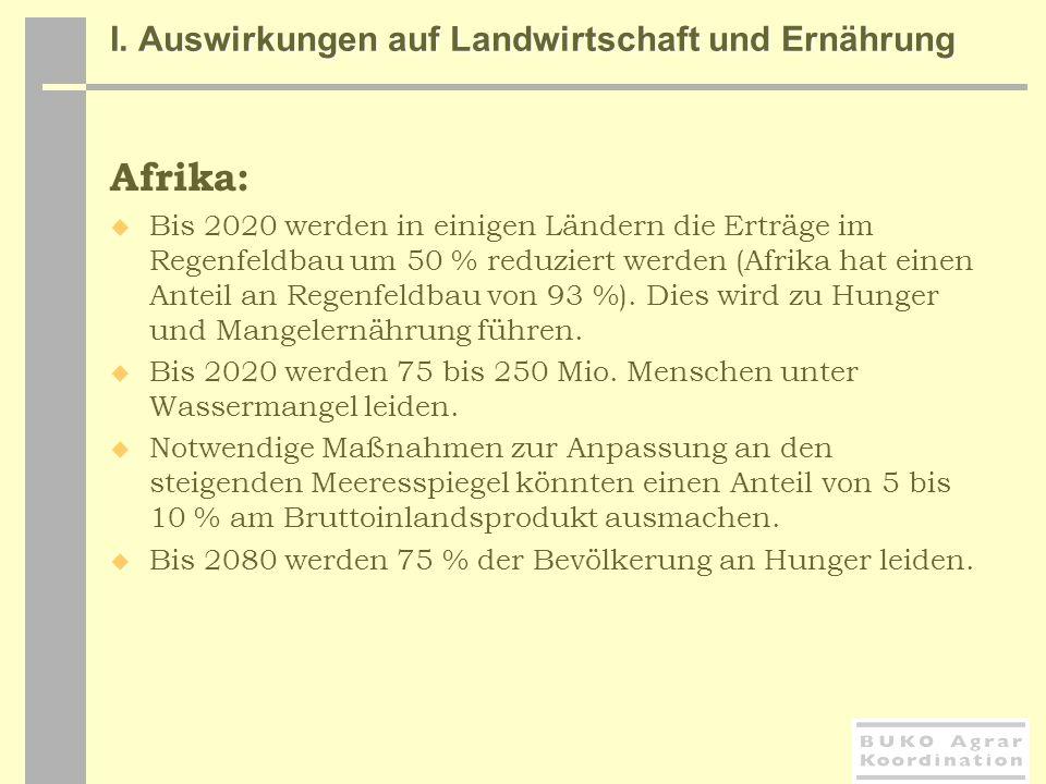 Afrika: Bis 2020 werden in einigen Ländern die Erträge im Regenfeldbau um 50 % reduziert werden (Afrika hat einen Anteil an Regenfeldbau von 93 %). Di