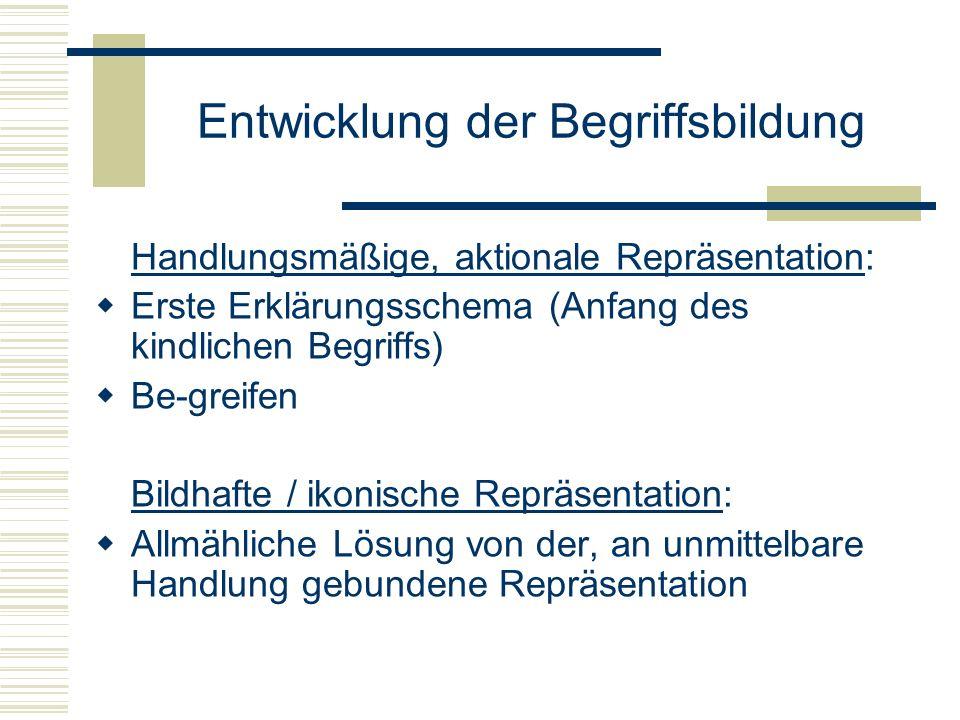 Entwicklung der Begriffsbildung Handlungsmäßige, aktionale Repräsentation: Erste Erklärungsschema (Anfang des kindlichen Begriffs) Be-greifen Bildhaft