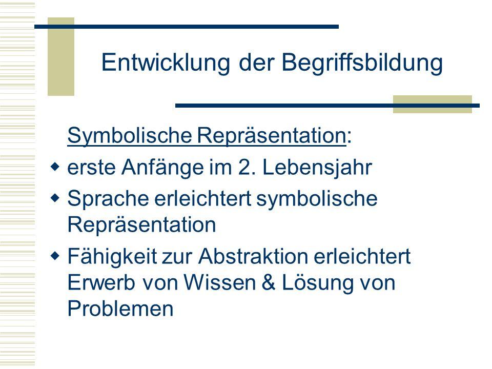 Entwicklung der Begriffsbildung Symbolische Repräsentation: erste Anfänge im 2. Lebensjahr Sprache erleichtert symbolische Repräsentation Fähigkeit zu