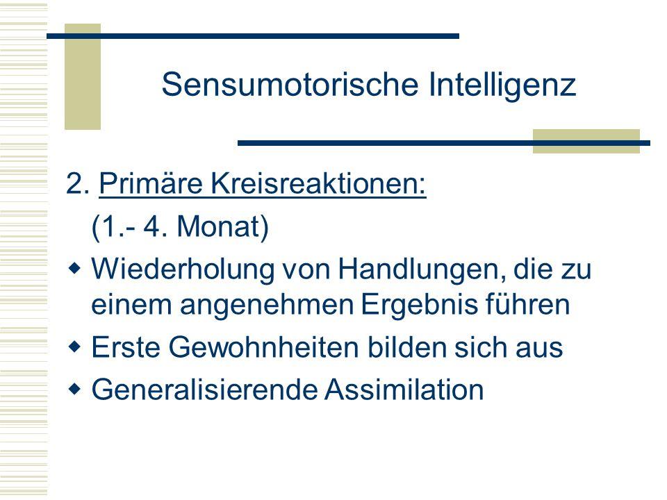 Sensumotorische Intelligenz 2. Primäre Kreisreaktionen: (1.- 4. Monat) Wiederholung von Handlungen, die zu einem angenehmen Ergebnis führen Erste Gewo