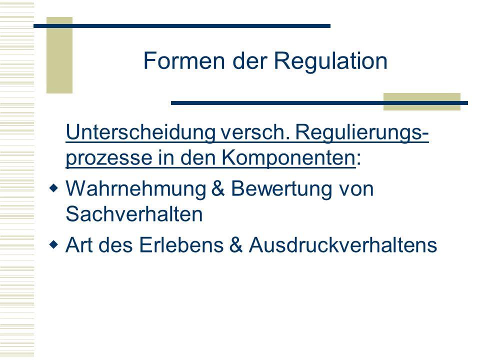 Formen der Regulation Unterscheidung versch. Regulierungs- prozesse in den Komponenten: Wahrnehmung & Bewertung von Sachverhalten Art des Erlebens & A