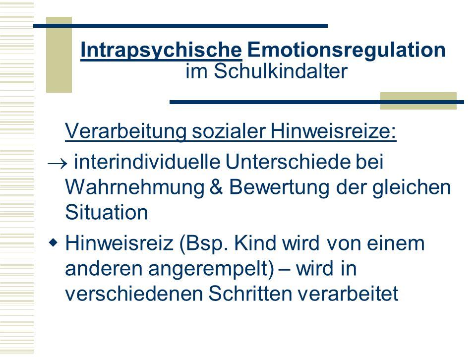 Intrapsychische Emotionsregulation im Schulkindalter Verarbeitung sozialer Hinweisreize: interindividuelle Unterschiede bei Wahrnehmung & Bewertung de