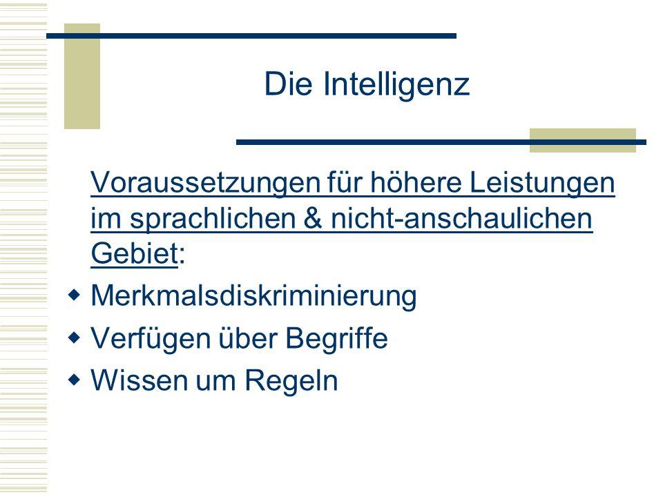 Die Intelligenz Voraussetzungen für höhere Leistungen im sprachlichen & nicht-anschaulichen Gebiet: Merkmalsdiskriminierung Verfügen über Begriffe Wis