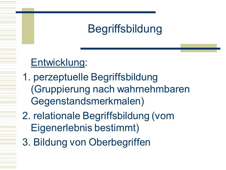 Begriffsbildung Entwicklung: 1. perzeptuelle Begriffsbildung (Gruppierung nach wahrnehmbaren Gegenstandsmerkmalen) 2. relationale Begriffsbildung (vom