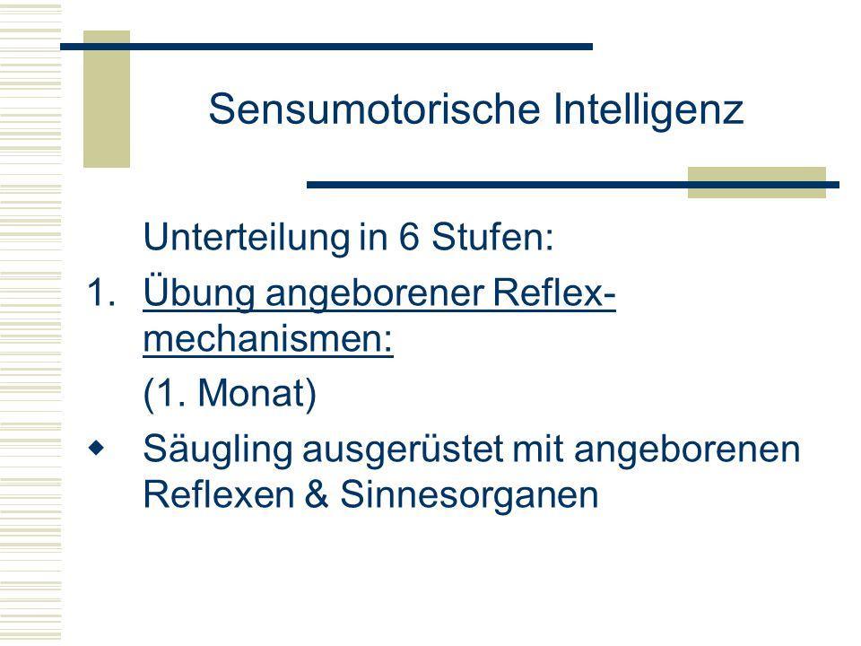 Sensumotorische Intelligenz Unterteilung in 6 Stufen: 1.Übung angeborener Reflex- mechanismen: (1. Monat) Säugling ausgerüstet mit angeborenen Reflexe