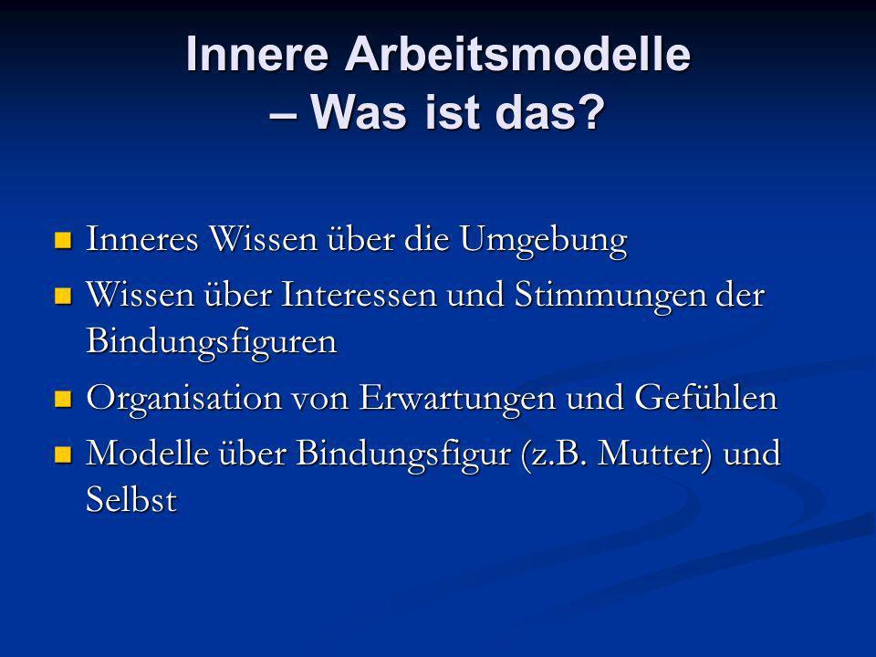 Innere Arbeitsmodelle – Was ist das? Inneres Wissen über die Umgebung Inneres Wissen über die Umgebung Wissen über Interessen und Stimmungen der Bindu