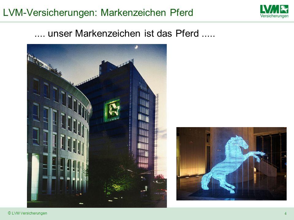 4 © LVM Versicherungen LVM-Versicherungen: Markenzeichen Pferd.... unser Markenzeichen ist das Pferd.....