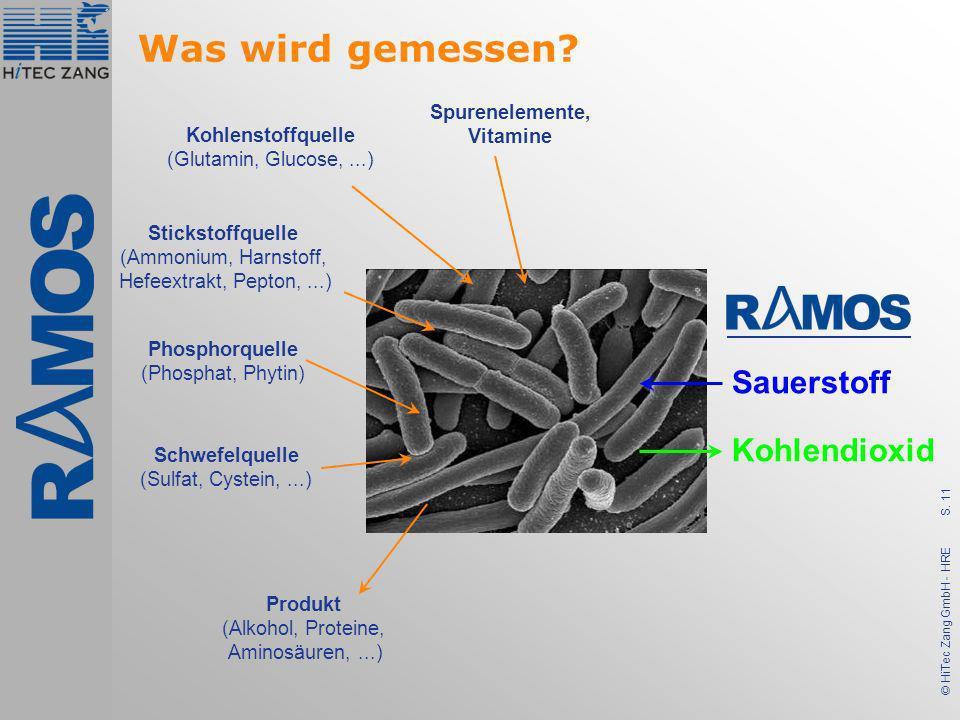 S. 11 © HiTec Zang GmbH - HRE Was wird gemessen? Kohlenstoffquelle (Glutamin, Glucose,...) Stickstoffquelle (Ammonium, Harnstoff, Hefeextrakt, Pepton,
