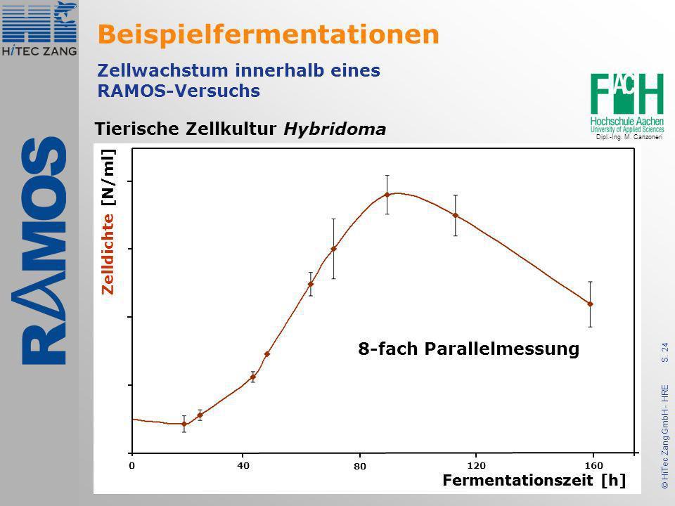 S. 24 © HiTec Zang GmbH - HRE Tierische Zellkultur Hybridoma Zellwachstum innerhalb eines RAMOS-Versuchs Fermentationszeit [h] Zelldichte [N/ml] 0 40