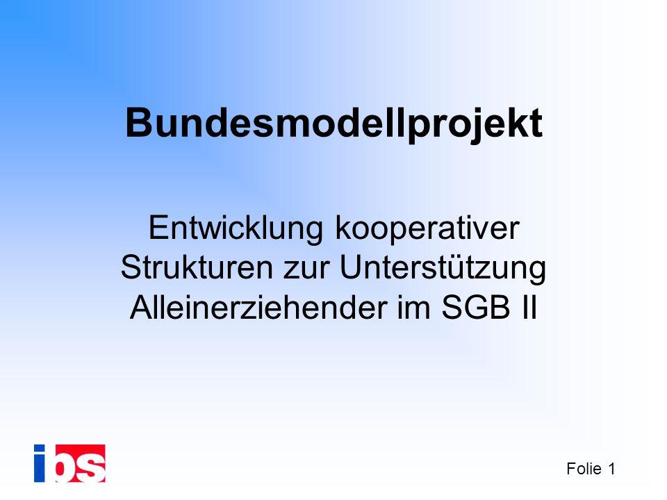 Folie 1 Entwicklung kooperativer Strukturen zur Unterstützung Alleinerziehender im SGB II Bundesmodellprojekt