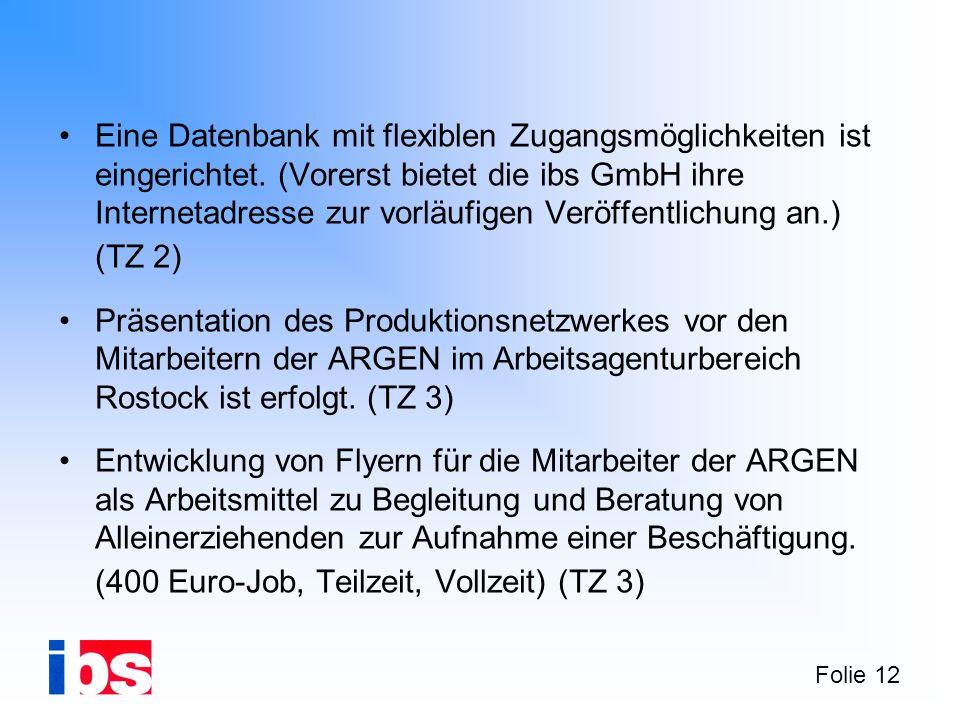 Folie 12 Eine Datenbank mit flexiblen Zugangsmöglichkeiten ist eingerichtet. (Vorerst bietet die ibs GmbH ihre Internetadresse zur vorläufigen Veröffe