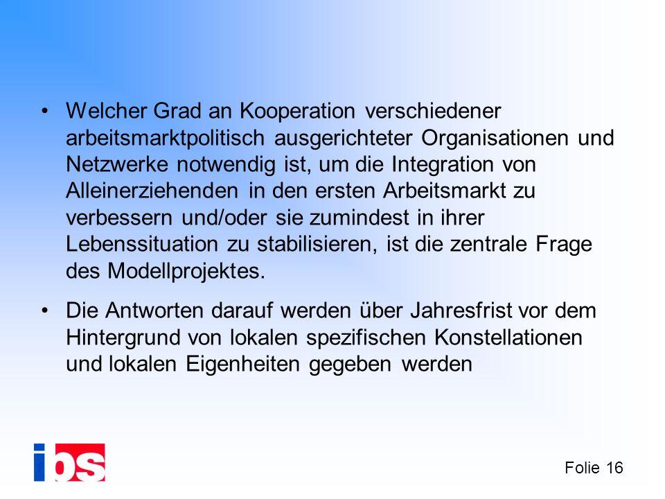 Folie 16 Welcher Grad an Kooperation verschiedener arbeitsmarktpolitisch ausgerichteter Organisationen und Netzwerke notwendig ist, um die Integration