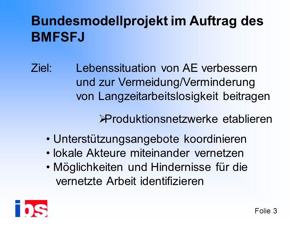 Folie 3 Bundesmodellprojekt im Auftrag des BMFSFJ Ziel: Lebenssituation von AE verbessern und zur Vermeidung/Verminderung von Langzeitarbeitslosigkeit
