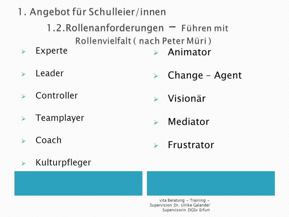 Experte Leader Controller Teamplayer Coach Kulturpfleger Animator Change – Agent Visionär Mediator Frustrator vita Beratung - Training - Supervision Dr.