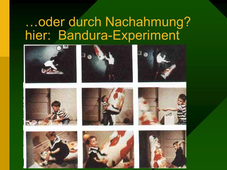 …oder durch Nachahmung? hier: Bandura-Experiment