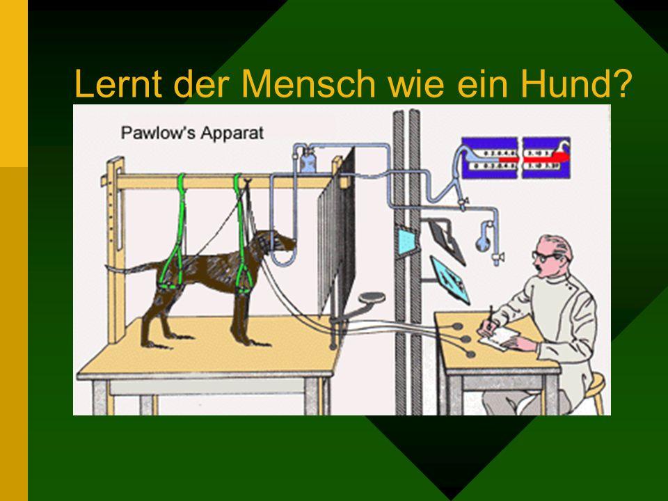 Lernt der Mensch wie ein Hund?