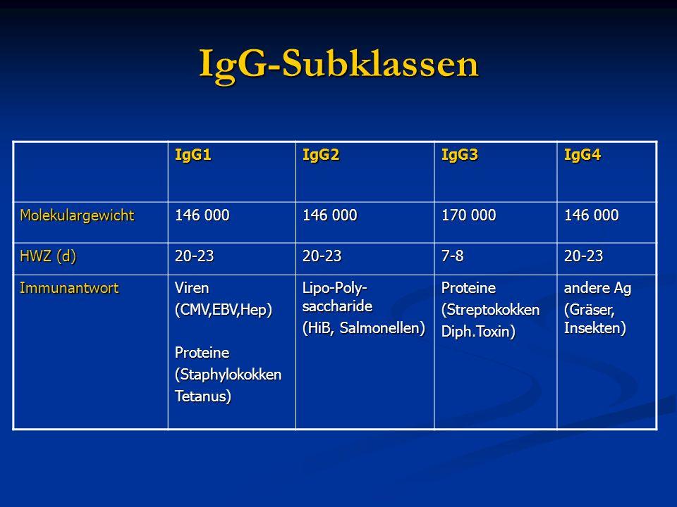 IgG-Subklassen IgG1IgG2IgG3IgG4 Molekulargewicht 146 000 170 000 146 000 HWZ (d) 20-2320-237-820-23 ImmunantwortViren(CMV,EBV,Hep)Proteine(Staphylokok