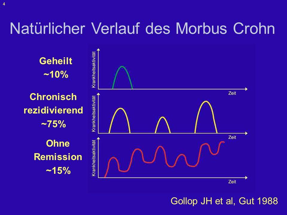 5 Langzeitverlauf Cosnes J et al. Inflamm Bowel Dis 2002;8:244