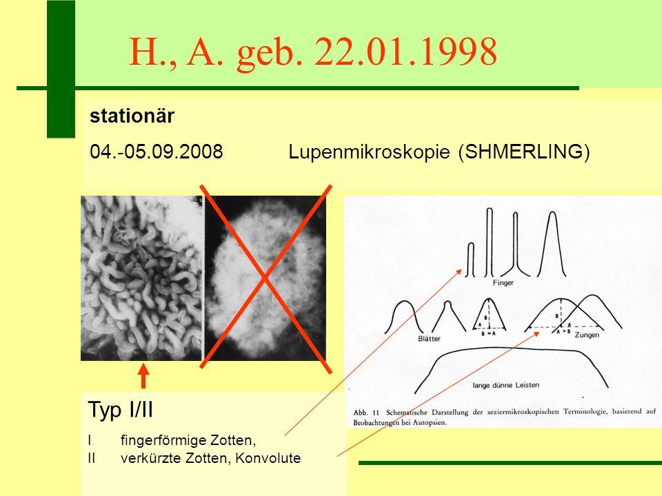 H., A. geb. 22.01.1998 stationär 04.-05.09.2008Lupenmikroskopie (SHMERLING) Typ I/II I fingerförmige Zotten, II verkürzte Zotten, Konvolute