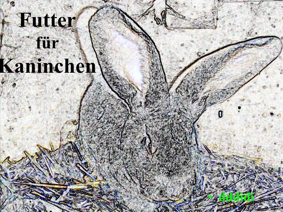 Gesunde Ernährung Sie ist die Grundlage für mobile und agile Tiere Kaninchen sind Futterspezialisten.