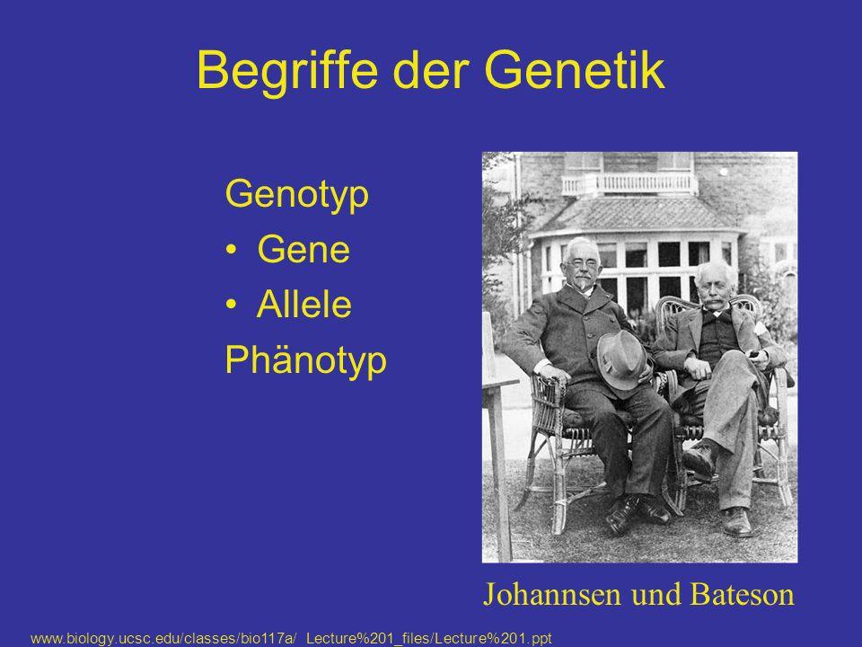 Begriffe der Genetik Genotyp Gene Allele Phänotyp www.biology.ucsc.edu/classes/bio117a/ Lecture%201_files/Lecture%201.ppt Johannsen und Bateson