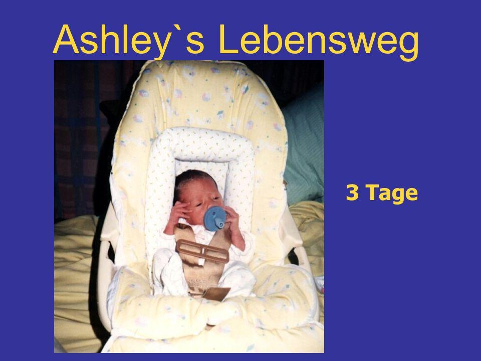 Ashley`s Lebensweg 3 Tage