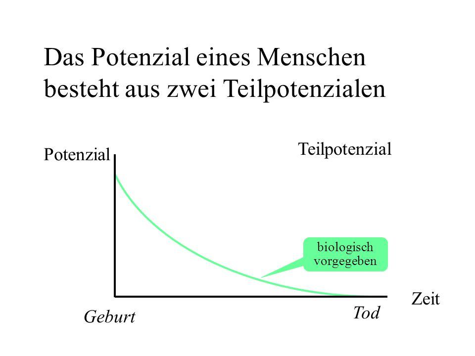 Das Potenzial eines Menschen besteht aus zwei Teilpotenzialen Potenzial Zeit Tod Geburt biologisch vorgegeben Teilpotenzial