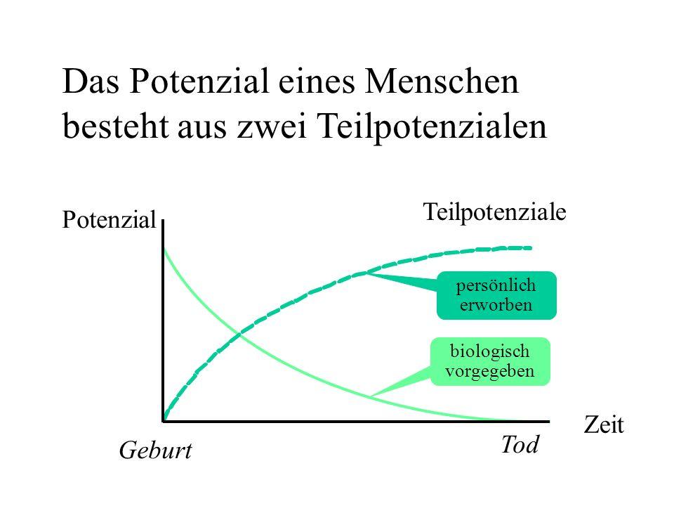 Potenzial Zeit Tod Geburt biologisch vorgegeben persönlich erworben Teilpotenziale Das Potenzial eines Menschen besteht aus zwei Teilpotenzialen