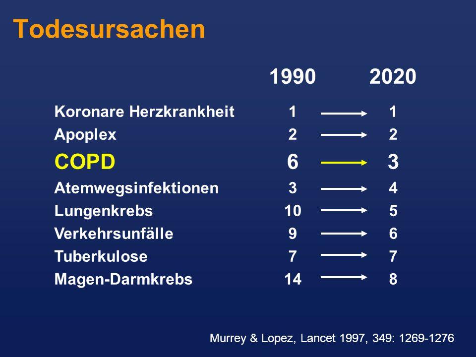 Todesursachen 1990 1 2 6 3 10 9 7 14 Koronare Herzkrankheit Apoplex COPD Atemwegsinfektionen Lungenkrebs Verkehrsunfälle Tuberkulose Magen-Darmkrebs 2