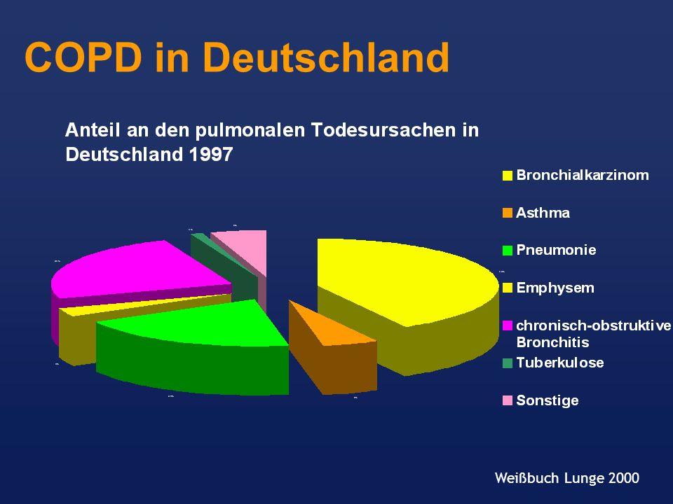 COPD in Deutschland Weißbuch Lunge 2000
