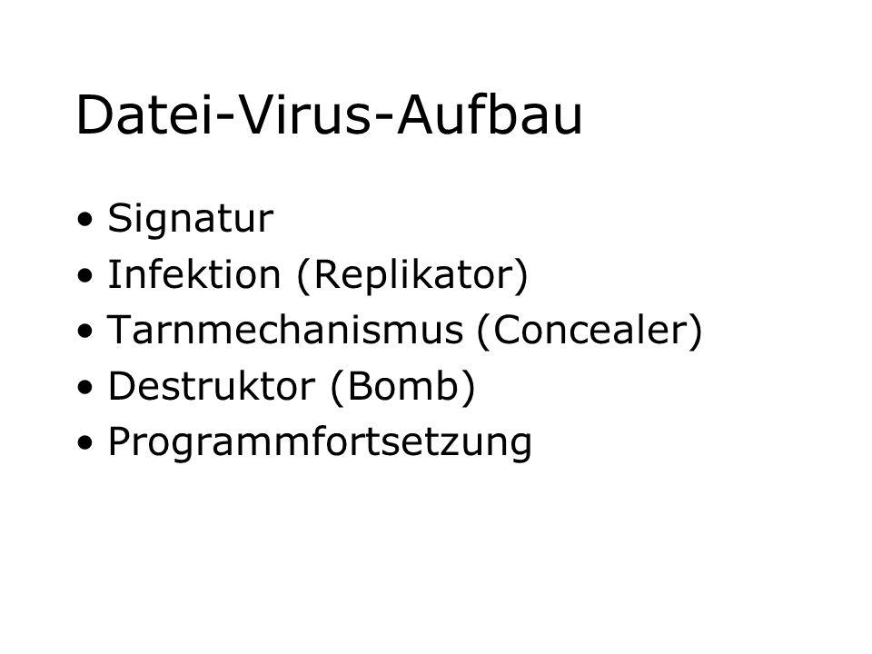 Datei-Virus-Aufbau Signatur Infektion (Replikator) Tarnmechanismus (Concealer) Destruktor (Bomb) Programmfortsetzung