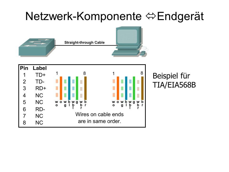 Netzwerk-Komponente Endgerät Beispiel für TIA/EIA568B