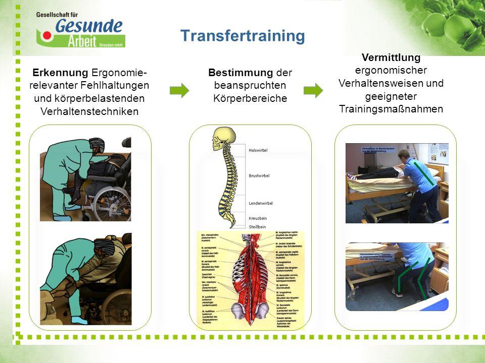 Transfertraining Erkennung Ergonomie- relevanter Fehlhaltungen und körperbelastenden Verhaltenstechniken Bestimmung der beanspruchten Körperbereiche V