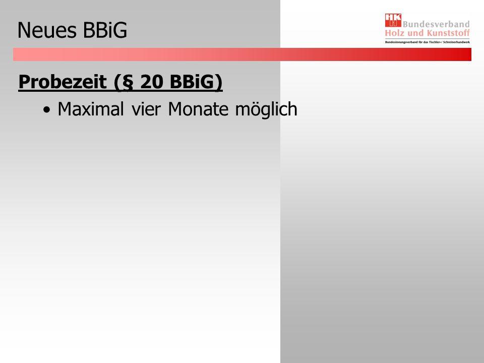 Neues BBiG Externe Gutachten (§ 39 Abs.