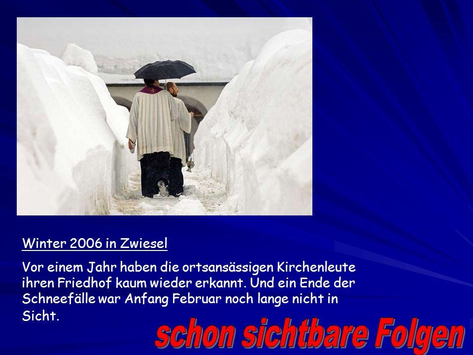 Bis zum Ende des Jahrhunderts wird es in Deutschland wegen des Klimawandels merklich wärmer und zwar um 1,8 bis 2,3 Grad Celsius. Das zeigt ein im Auf